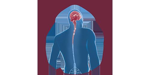FES bei Multipler Sklerose | STIWELL Neurorehabilitation