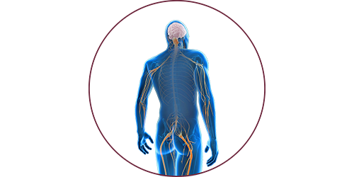 FES for neural lesions | STIWELL® Neurorehabilitation