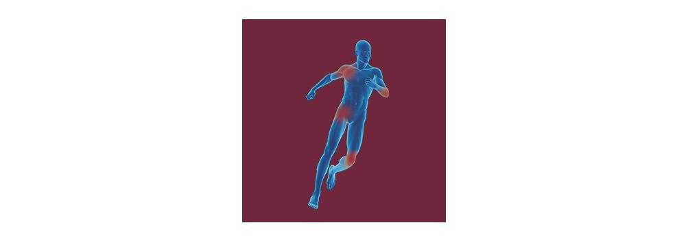 STIWELL | functional electrical stimulation (FES) for orthopaedics & traumatology