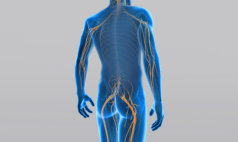 What is a peripheral paresis?